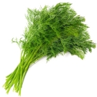 bunch of a dill
