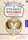 Interdruk Chill Koloruj.Szalone scribbles. Coloring for everyone. Ornaments, animal motifs