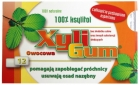 Xyligum chewing gum with fruit flavor 100% xylitol