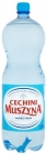 Muszyna Cechini Natural mineral water high-mineralized high-saturated CO2