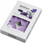 Bolsius Aromatic Lavender scented tealights