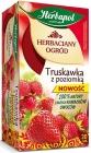 Herbapol Tea Garden té de fresa con fresa salvaje