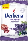 Verbena Lavender with blueberries