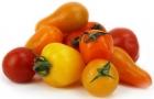 Pomidory koktajlowe mix ekologiczne