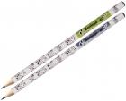 Berlingo Ołówek Hybrid HB