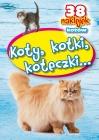 Koty, kotki, koteczki kolorowanka