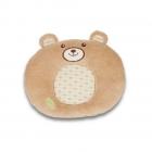 Bear Pillow from months