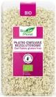 Bio Planet Oat Flakes Gluten-free BIO