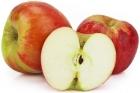 Jabłka Champion ekologiczne Bio