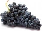 Winogrona czarne