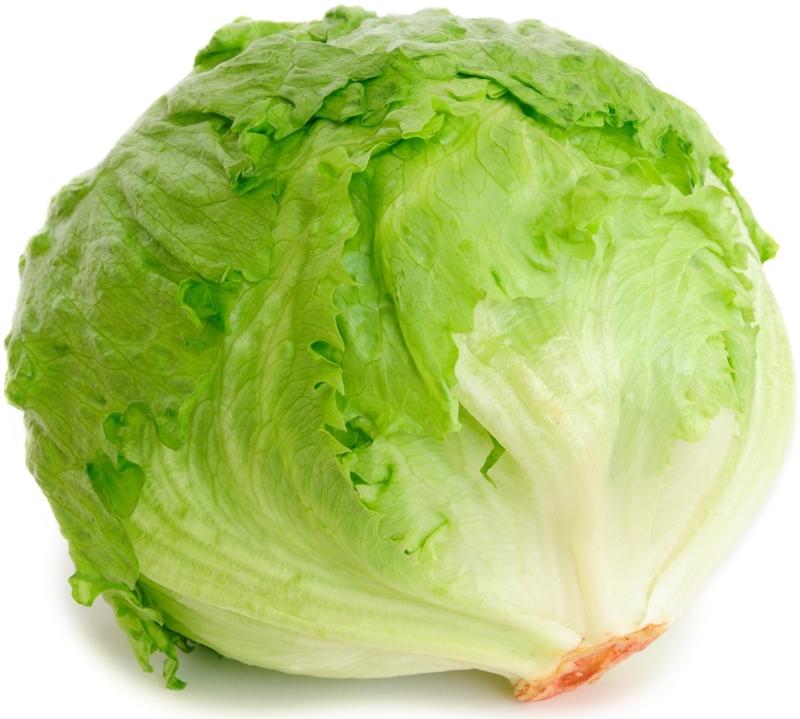 ice lettuce
