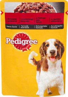 Futter für ausgewachsene Hunde, einem Beutel von Rindfleisch in Gelee