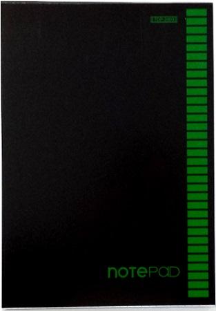 Brulion A5 96 kartek kratka