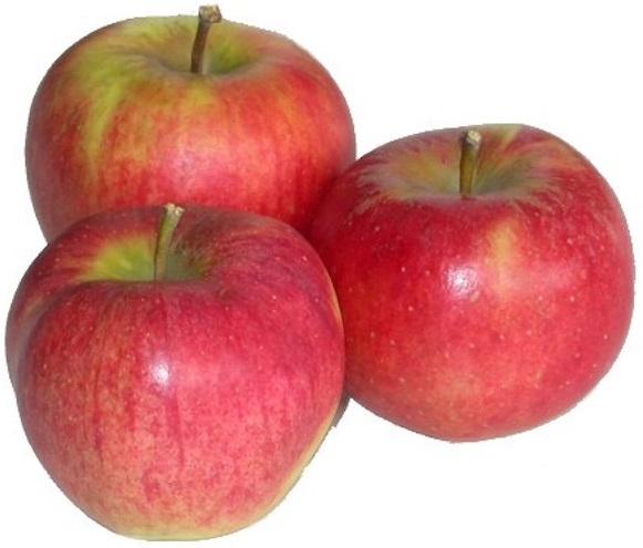 Jabłka Elstar