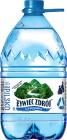 Żywiec Zdrój woda źródlana