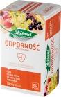 Herbapol Odporność Herbata owocowo-