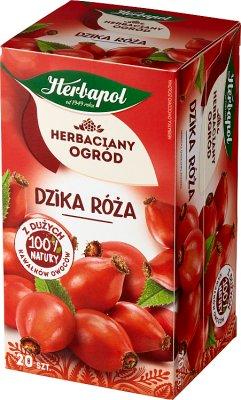 Herbapol herbata ziołowa 20 torebek z dziką różą