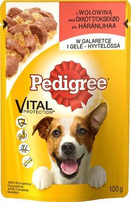 корм для взрослых собак, саше говядины в желе