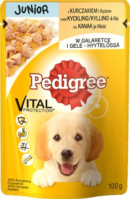 Pedigree Junior jedzenie dla szczeniąt, saszetka  z kurczakiem w galaretce