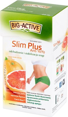 Big-Active Slim Plus Anti YoYo Herbatka ziołowo-owocowa Suplement diety