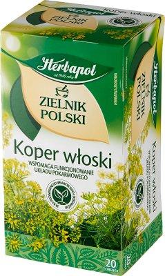 Herbapol Zielnik Polski herbata ziołowa Koper włoski