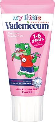 Vademecum Junior pasta do zębów o smaku truskawkowym