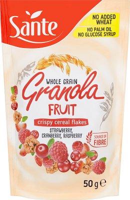 Sante gronola fruta, cereales, arándano, frambuesa, fresa, cornijuelo