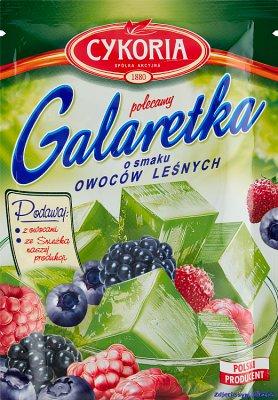 Cykoria Galaretka  o smaku owoców leśnych