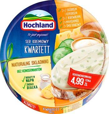Hochland serek topiony,  8 trójkątnych porcji,kwartett