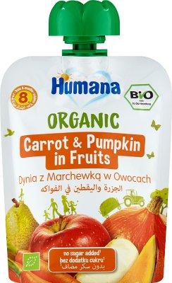 Humana mus owocowo-warzywny  dynia i marchewka w owocach