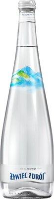 Żywiec Zdrój Woda niegazowana  szklana butelka