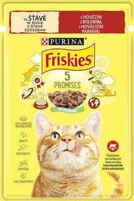 Purina Friskies karma dla kota w sosie z wołowiną